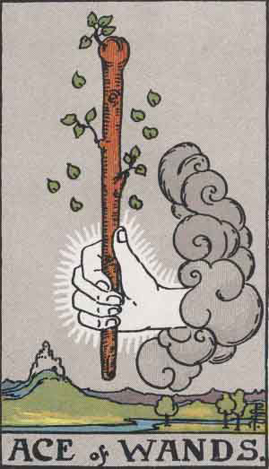 Tarot Card by Card: Ace of Wands - Tarot Card Meanings